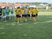 CIKI CUP 2013